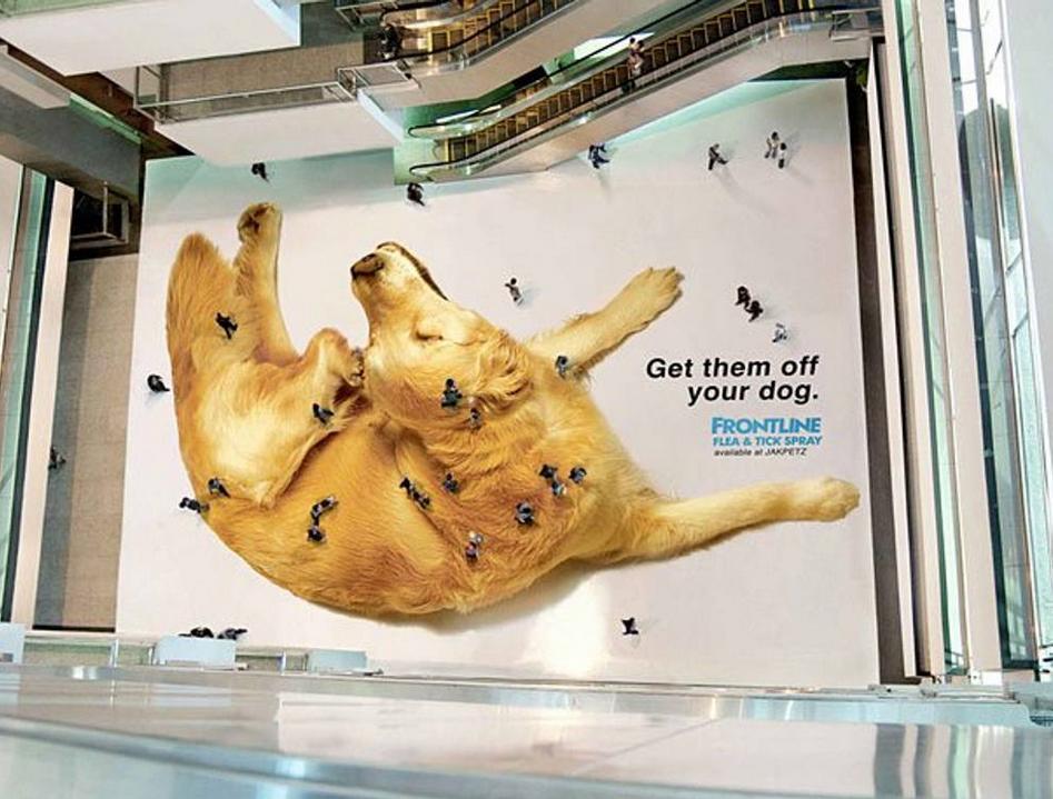 gigantografica calpestabile promo antiparassitario