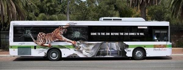 adesivo tigre su autobus