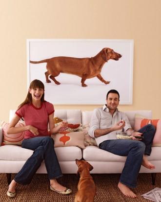 fotoquadro cane in salotto