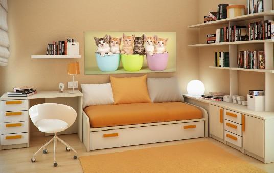 cameretta con tela canvas gattini