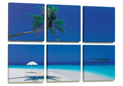 fotoquadri soggetto tropici