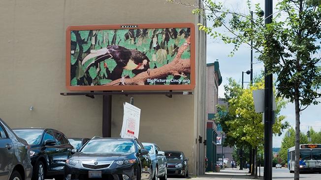 cartellone stradale artistico