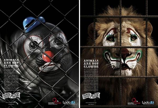 animali non sono clown